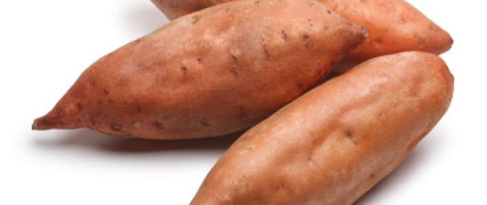 Sweet_Potato_Edit_Web